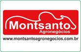 Montsanto